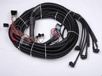 Wiring Harness for Automotive
